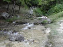 natura-es119