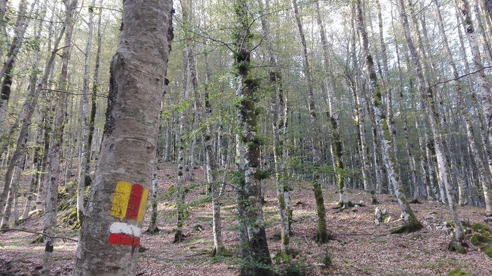 natura-es118