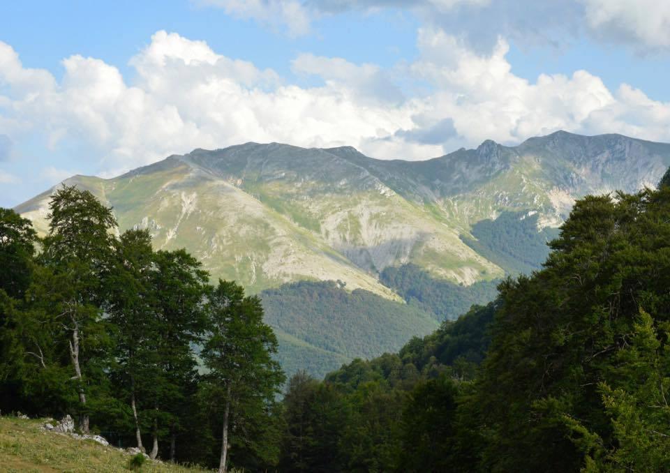 natura-es55