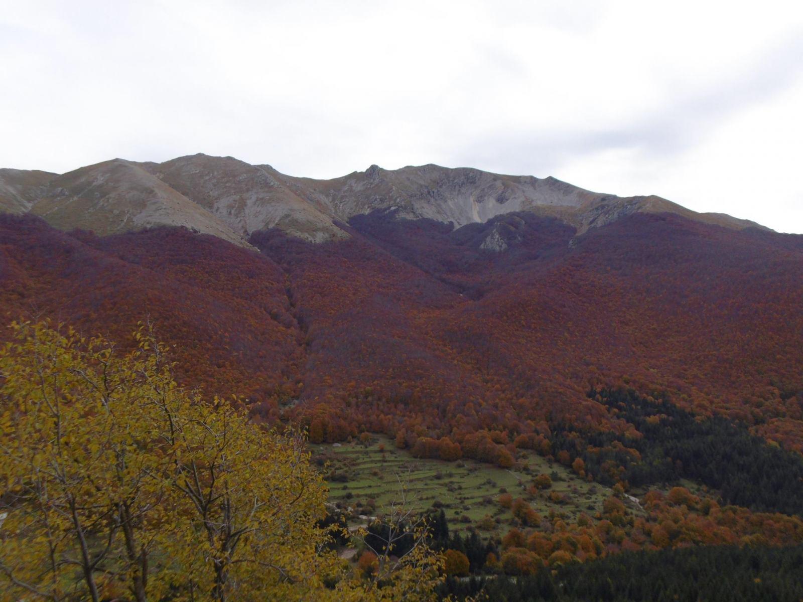 natura-es69
